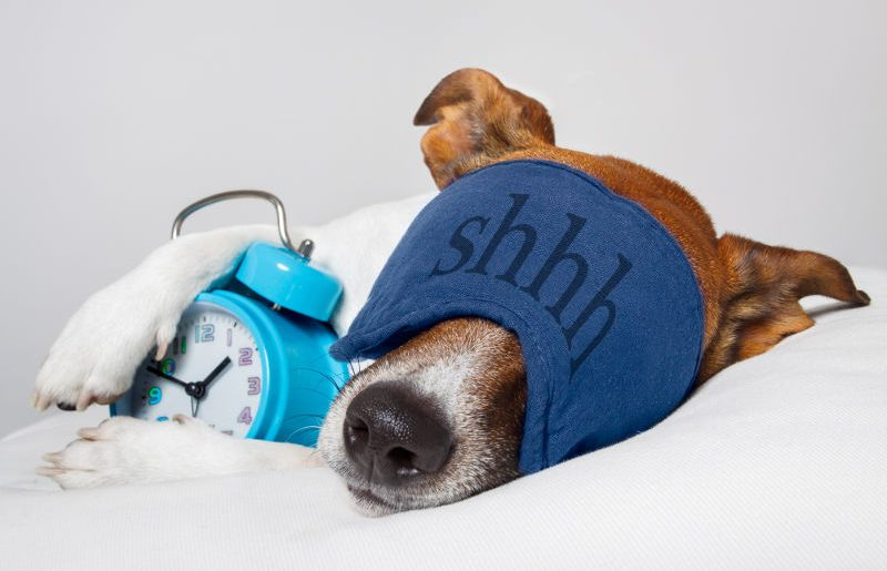 Best Noise-Cancelling Earmuffs and Masks for Sleeping