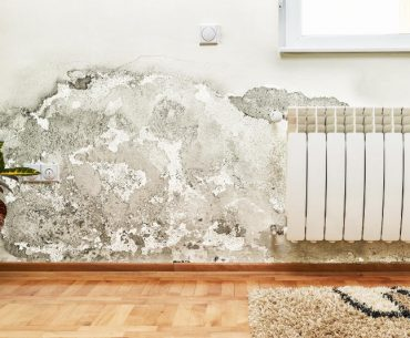 How to dry out a wall after water damage.