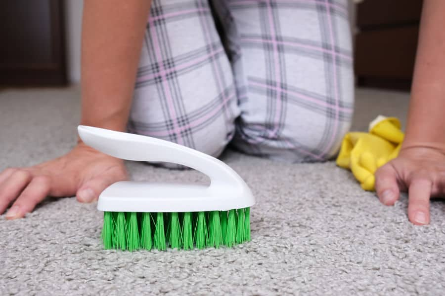 Cleaning a carpet with a brush and a vinegar solution.