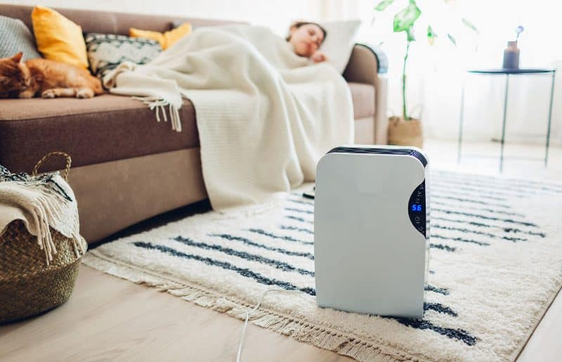 Do Dehumidifiers Cool or Heat a Room?