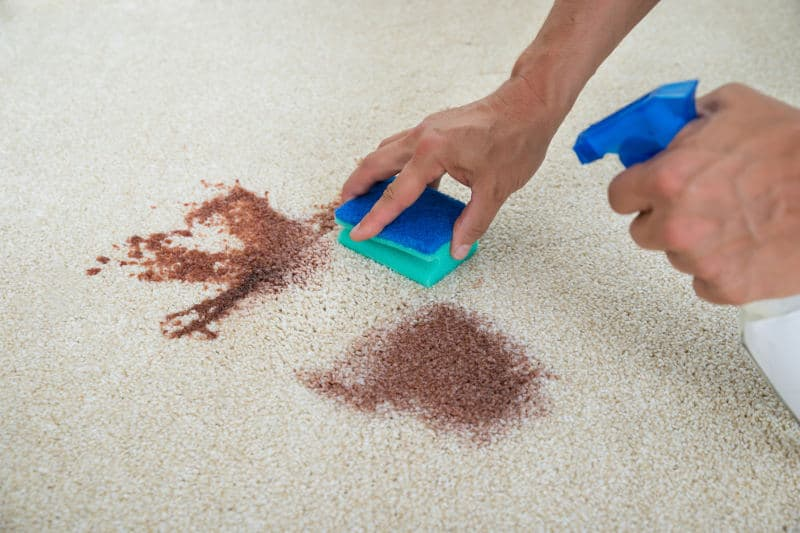 Useful Home Remes That Will Solve Your Carpet Cleaning Woes