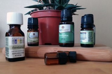 What happens if you put essential oil into a humidifier.