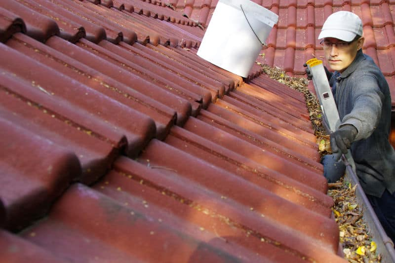 How to clean rain gutters by yourself.
