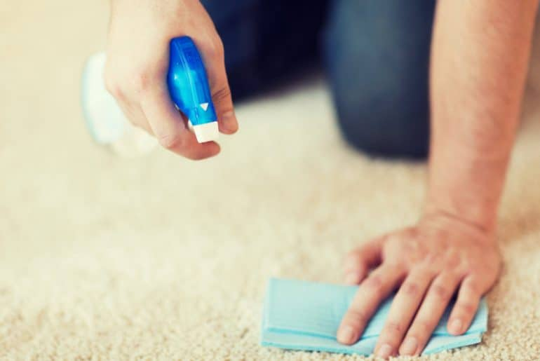 The best carpet cleaning spray (foam and liquid).