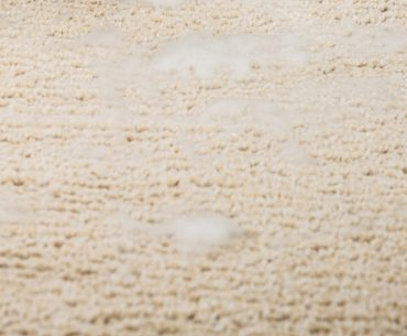 The best ways to dry a wet carpet.
