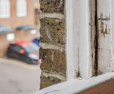 Rotted window: Can you use bleach to fix wood rot?