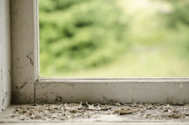 How to fix a rotted window frame.
