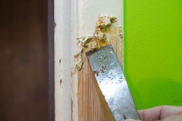 How to make a DIY paint stripper and scrape the paint.