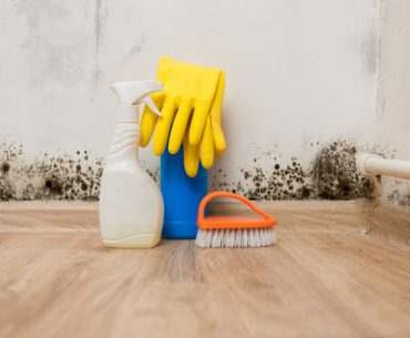 Bleach and vinegar: Which One Is Better for Mold Removal