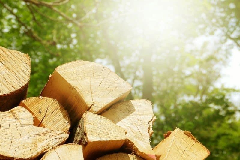 Drying firewood in the sun.