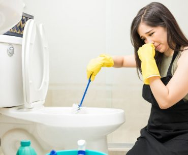 Why the toilet smells like sewage and how to fix it.